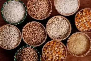 मोटे अनाज कुपोषण दूर करने के लिए रामबाण :डॉ पूनम सिंह