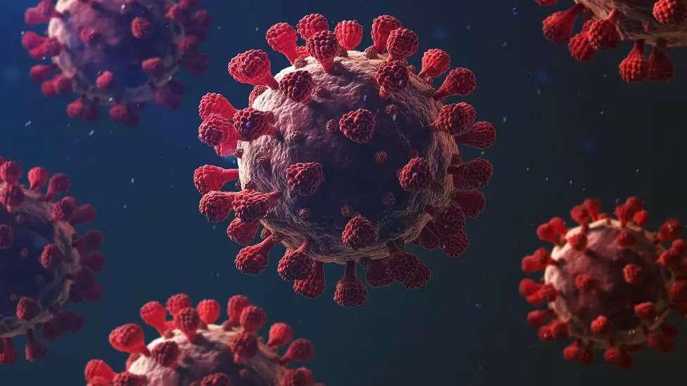 कोरोना: कोविड-19 की एक और वैक्सीन जल्द आ सकती है