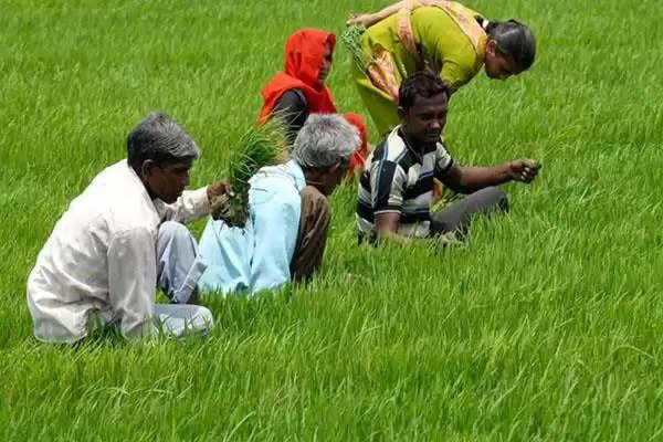 देश का कृषि निर्यात 2020-21 में शानदार रहा